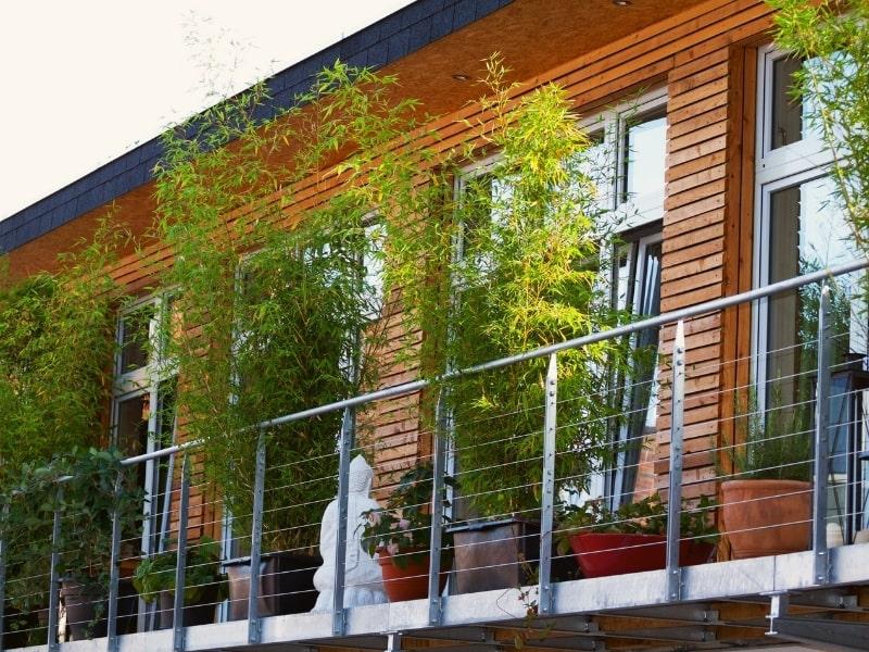 amenagement exterieur d un balcon avec des plantes